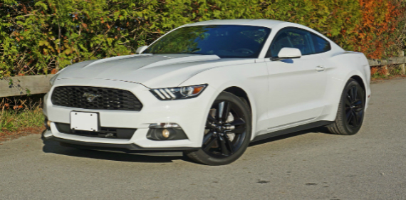 2016 ford mustang ecoboost fastback. Black Bedroom Furniture Sets. Home Design Ideas